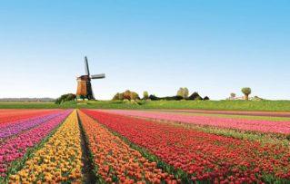 4 Sitios Turisticos que Haran su Viaje a Amsterdan Realmente Inolvidable!!!
