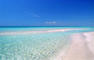 5 Atractivos que Puede Disfrutar de la Playa Lido Marini Pescoluse !!!