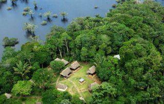 2 Opciones de Alojamiento y Comida en la Reserva de Ecuador Cuyabeno