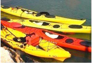Los Kayak recreativos