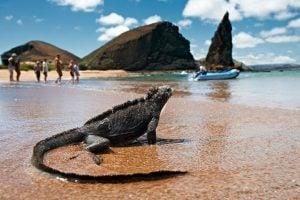 Islas Galápagos como llegar