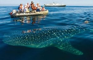 Islas Galápagos lugares de interes