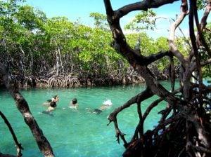 Conocer Atracciones Turísticas en Puerto Rico